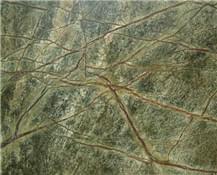 印度雨林绿
